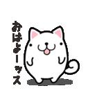 ひらめ犬(個別スタンプ:1)