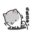 ひらめ犬(個別スタンプ:4)