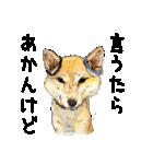 柴犬のここが好き10(個別スタンプ:23)
