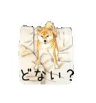 柴犬のここが好き10(個別スタンプ:29)
