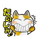 みーこ5(デカ文字)(個別スタンプ:22)