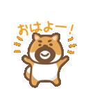 にほんの柴犬@ドロボーひげ(個別スタンプ:01)