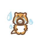 にほんの柴犬@ドロボーひげ(個別スタンプ:16)