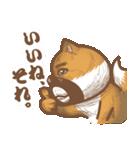 にほんの柴犬@ドロボーひげ(個別スタンプ:34)
