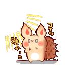 エゾリスのエゾちゃん(個別スタンプ:01)