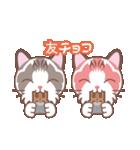 バレンタインデイ〜ふわふわのラグドール(個別スタンプ:07)