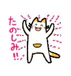 ねこのぽっけ2(個別スタンプ:3)