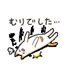 ねこのぽっけ2(個別スタンプ:27)