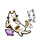 ねこのぽっけ2(個別スタンプ:32)