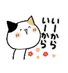 猫便り10 ~無責任な人 2〜(個別スタンプ:27)