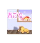 飛び出すニャンコ【動く3D】(個別スタンプ:21)