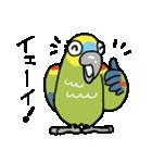 青帽子のコタくん (日本語)(個別スタンプ:03)