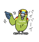 青帽子のコタくん (日本語)(個別スタンプ:04)