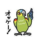 青帽子のコタくん (日本語)(個別スタンプ:05)