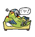 青帽子のコタくん (日本語)(個別スタンプ:09)