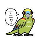 青帽子のコタくん (日本語)(個別スタンプ:10)