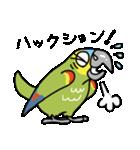 青帽子のコタくん (日本語)(個別スタンプ:17)