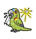 青帽子のコタくん (日本語)(個別スタンプ:18)