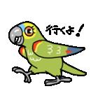 青帽子のコタくん (日本語)(個別スタンプ:19)