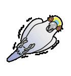 青帽子のコタくん (日本語)(個別スタンプ:24)