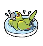青帽子のコタくん (日本語)(個別スタンプ:28)