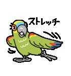 青帽子のコタくん (日本語)(個別スタンプ:29)