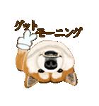 王道の犬!柴犬(個別スタンプ:15)