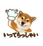 王道の犬!柴犬(個別スタンプ:22)