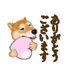 王道の犬!柴犬(個別スタンプ:27)