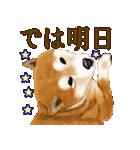 王道の犬!柴犬(個別スタンプ:39)