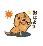 気軽にスタンプ ダックス(クリーム)(個別スタンプ:01)