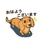 気軽にスタンプ ダックス(クリーム)(個別スタンプ:03)