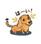 気軽にスタンプ ダックス(クリーム)(個別スタンプ:04)