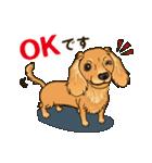 気軽にスタンプ ダックス(クリーム)(個別スタンプ:07)