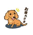 気軽にスタンプ ダックス(クリーム)(個別スタンプ:10)