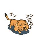 気軽にスタンプ ダックス(クリーム)(個別スタンプ:30)
