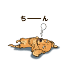 気軽にスタンプ ダックス(クリーム)(個別スタンプ:39)