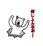 俺やで!ゆかいな白柴わんこ6(岡山弁編)