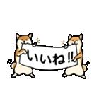 はなおとコンビ(個別スタンプ:06)