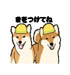 はなおとコンビ(個別スタンプ:09)