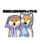 はなおとコンビ(個別スタンプ:31)