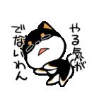 黒しばばん(個別スタンプ:03)