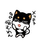 黒しばばん(個別スタンプ:10)