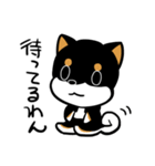 黒しばばん(個別スタンプ:15)
