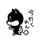 黒しばばん(個別スタンプ:19)