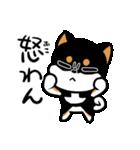 黒しばばん(個別スタンプ:29)