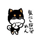 黒しばばん(個別スタンプ:37)