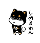 黒しばばん(個別スタンプ:40)