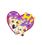 Corgi LOVE(個別スタンプ:01)