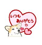 Corgi LOVE(個別スタンプ:05)